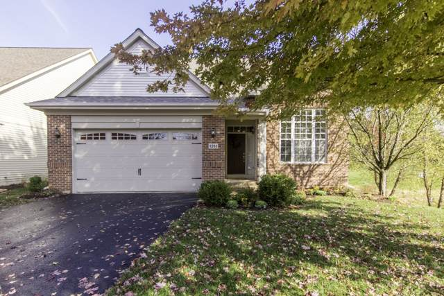 1251 Everwood Court, Aurora, IL 60505 (MLS #10916021) :: The Wexler Group at Keller Williams Preferred Realty