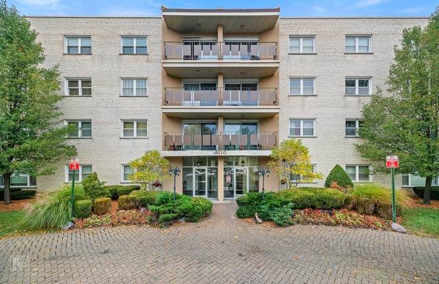 8210 Elmwood Avenue #312, Skokie, IL 60077 (MLS #10916147) :: Helen Oliveri Real Estate