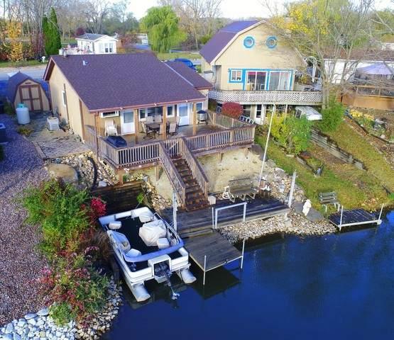9 Dinosaur Road, Wilmington, IL 60481 (MLS #10916232) :: Ani Real Estate