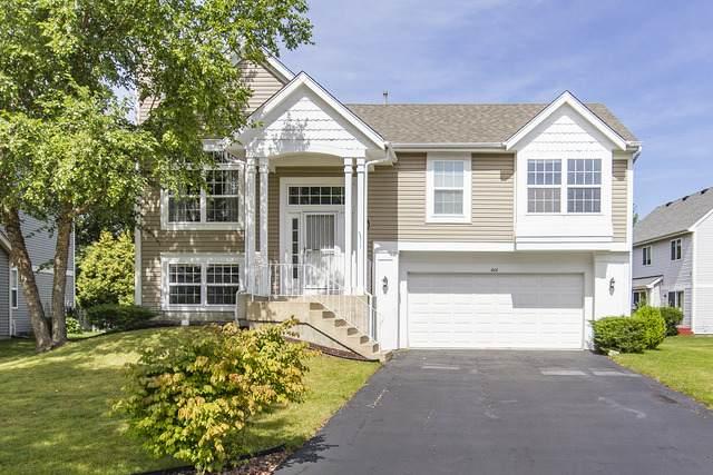 466 Valley Forge Avenue, South Elgin, IL 60177 (MLS #10916535) :: Helen Oliveri Real Estate
