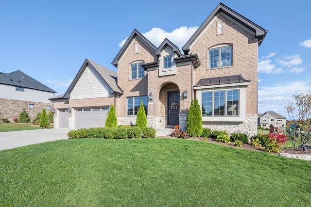 15221 S Nutmeg Avenue, Homer Glen, IL 60491 (MLS #10916678) :: Janet Jurich