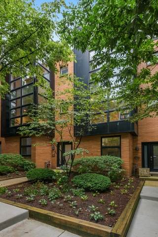 2008 W Willow Street E, Chicago, IL 60647 (MLS #10916823) :: Littlefield Group