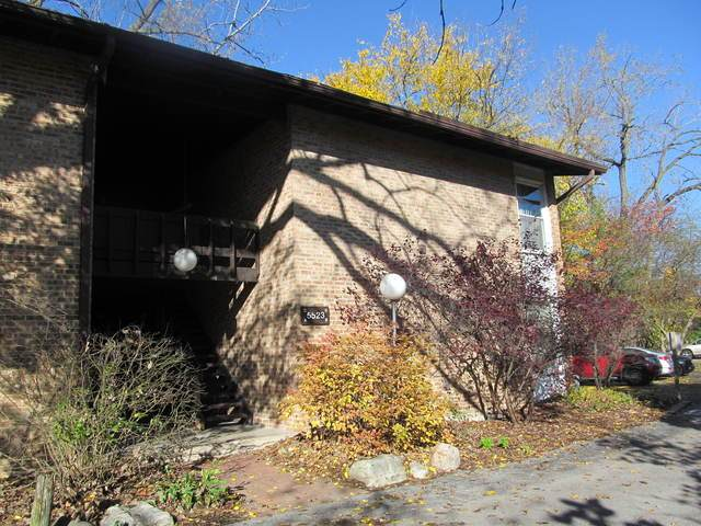 5523 E Lake Drive D, Lisle, IL 60532 (MLS #10917137) :: BN Homes Group