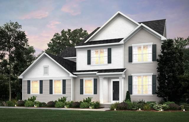 810 Marlisle Lane, Elgin, IL 60124 (MLS #10917532) :: Touchstone Group