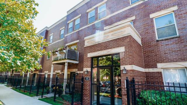 803 E 41st Street 3B, Chicago, IL 60653 (MLS #10917580) :: Littlefield Group