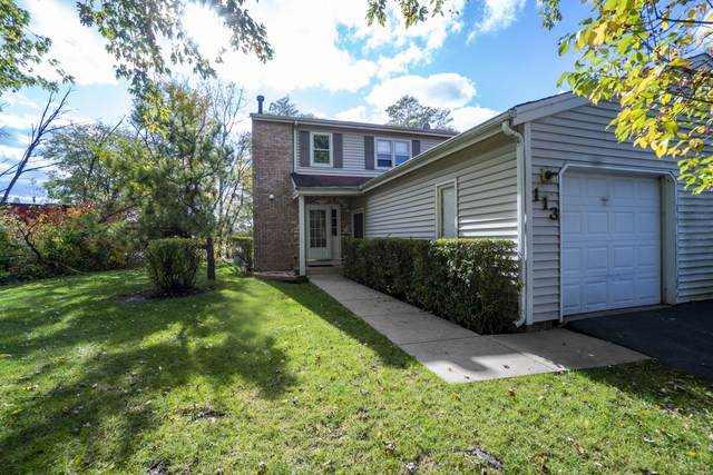 113 Julie Road, Bolingbrook, IL 60440 (MLS #10917713) :: The Wexler Group at Keller Williams Preferred Realty