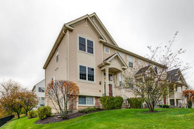 1087 Manchester Circle, Grayslake, IL 60030 (MLS #10917756) :: Property Consultants Realty