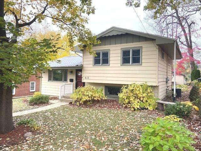 613 1st Avenue, Dixon, IL 61021 (MLS #10917767) :: Property Consultants Realty