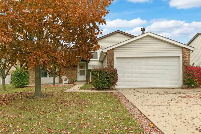 523 Waterford Drive, Lindenhurst, IL 60046 (MLS #10917800) :: Helen Oliveri Real Estate