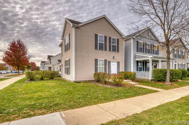 725 Four Seasons Boulevard #725, Aurora, IL 60504 (MLS #10917880) :: Helen Oliveri Real Estate
