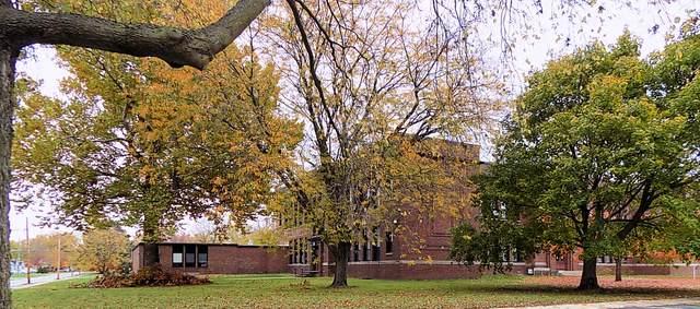 1206 Elm Street, Streator, IL 61364 (MLS #10917982) :: Helen Oliveri Real Estate