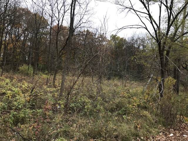 3.6 acres Us Rt 12 Highway, Spring Grove, IL 60081 (MLS #10918025) :: Jacqui Miller Homes