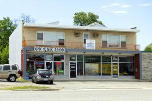 1319 Ogden Avenue, Downers Grove, IL 60515 (MLS #10918144) :: The Wexler Group at Keller Williams Preferred Realty