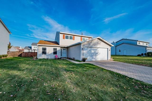 204 Green Mountain Drive, Bolingbrook, IL 60440 (MLS #10918259) :: John Lyons Real Estate