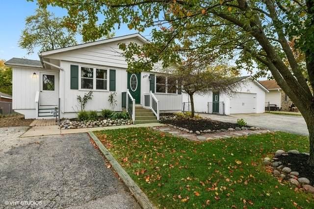 527 Redwing Drive, Round Lake Beach, IL 60073 (MLS #10918403) :: John Lyons Real Estate