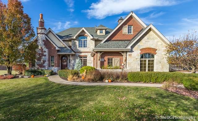 22528 N Pebble Lake Court, Frankfort, IL 60423 (MLS #10918662) :: John Lyons Real Estate