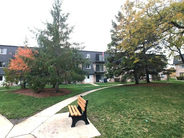 9458 Bay Colony Drive 2N, Des Plaines, IL 60016 (MLS #10918665) :: John Lyons Real Estate