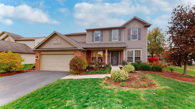 207 Honeysuckle Street, Bolingbrook, IL 60490 (MLS #10918909) :: Littlefield Group