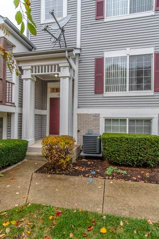 114 Enclave Circle B, Bolingbrook, IL 60440 (MLS #10918980) :: The Wexler Group at Keller Williams Preferred Realty