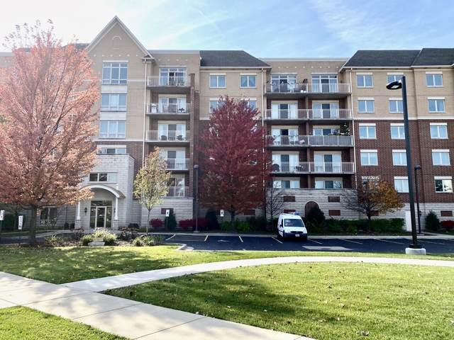 8300 Concord Drive #403, Morton Grove, IL 60053 (MLS #10919228) :: Helen Oliveri Real Estate