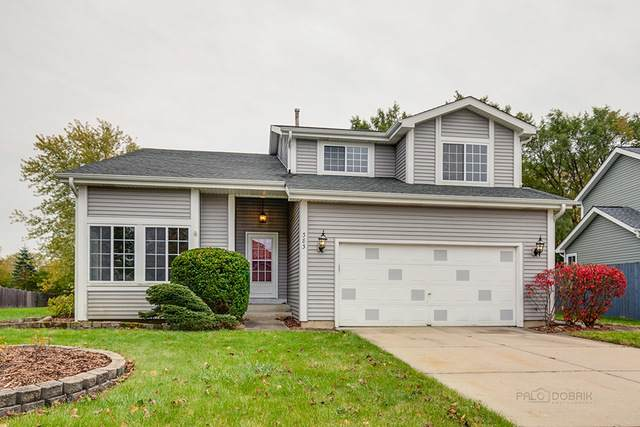 383 N Colony Drive, Round Lake Park, IL 60073 (MLS #10919443) :: Suburban Life Realty