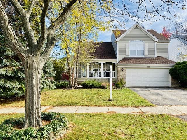 784 Wildflower Circle, Naperville, IL 60540 (MLS #10919613) :: The Wexler Group at Keller Williams Preferred Realty