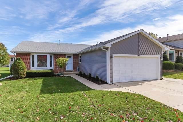 725 Cutter Lane, Elk Grove Village, IL 60007 (MLS #10919689) :: Littlefield Group