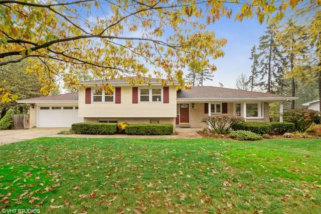 4113 Downers Drive, Downers Grove, IL 60515 (MLS #10919717) :: Suburban Life Realty