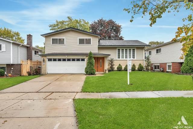 339 Dulles Road, Des Plaines, IL 60016 (MLS #10919761) :: Helen Oliveri Real Estate