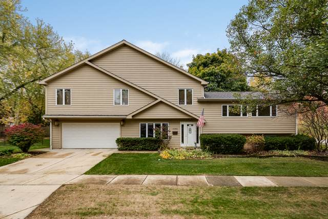 1104 Catherine Avenue, Naperville, IL 60540 (MLS #10919768) :: The Wexler Group at Keller Williams Preferred Realty