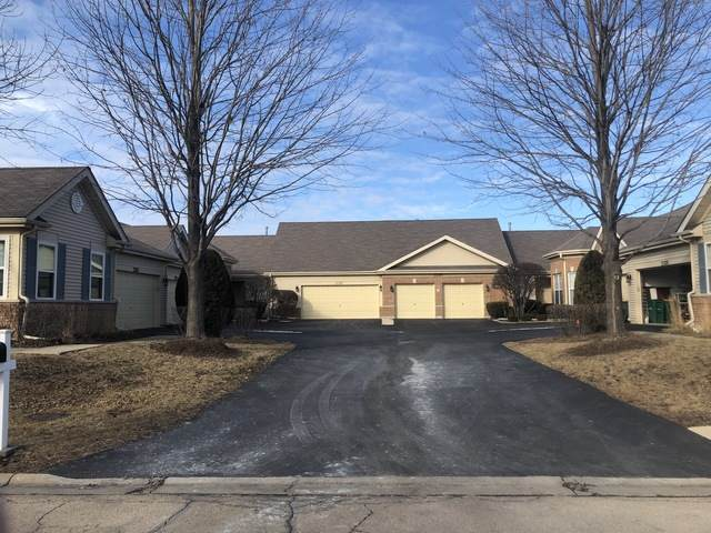 21312 W Conifer Drive, Plainfield, IL 60544 (MLS #10919769) :: The Wexler Group at Keller Williams Preferred Realty