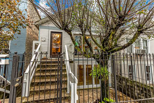 2049 W 17th Street, Chicago, IL 60608 (MLS #10919788) :: John Lyons Real Estate