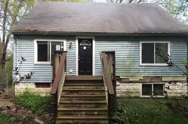 38481 N 9th Street, Spring Grove, IL 60081 (MLS #10919914) :: Lewke Partners