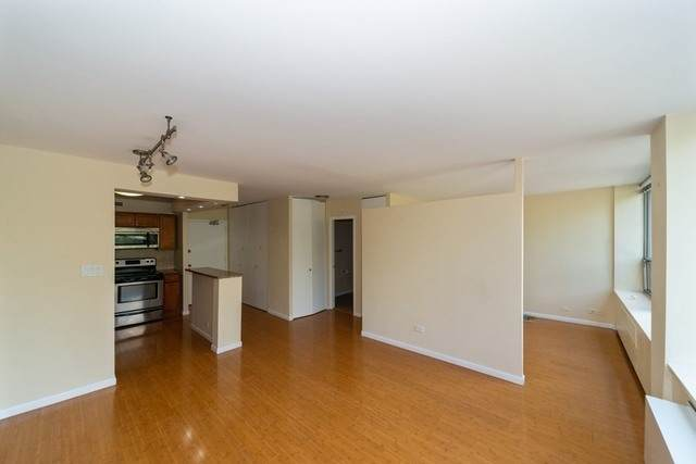 1360 N Sandburg Terrace #304, Chicago, IL 60610 (MLS #10919918) :: Property Consultants Realty