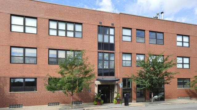 1728 N Damen Avenue #314, Chicago, IL 60647 (MLS #10919988) :: Property Consultants Realty