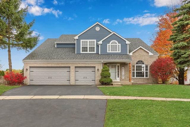 1002 Rainy Lake Court, Lake Villa, IL 60046 (MLS #10920010) :: BN Homes Group