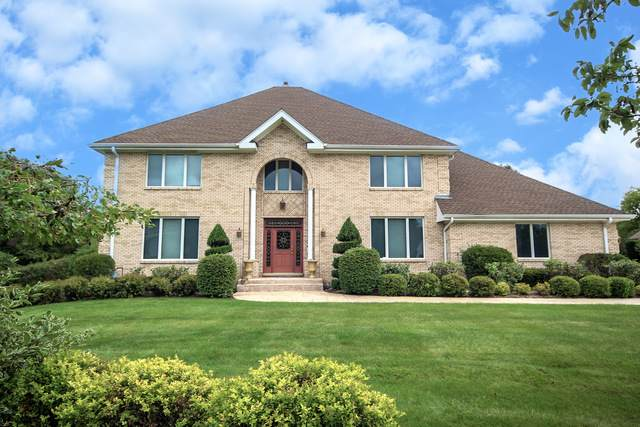 60 Overbrook Road, South Barrington, IL 60010 (MLS #10920024) :: Janet Jurich