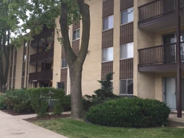 640 Murray Lane #310, Des Plaines, IL 60016 (MLS #10920030) :: Property Consultants Realty