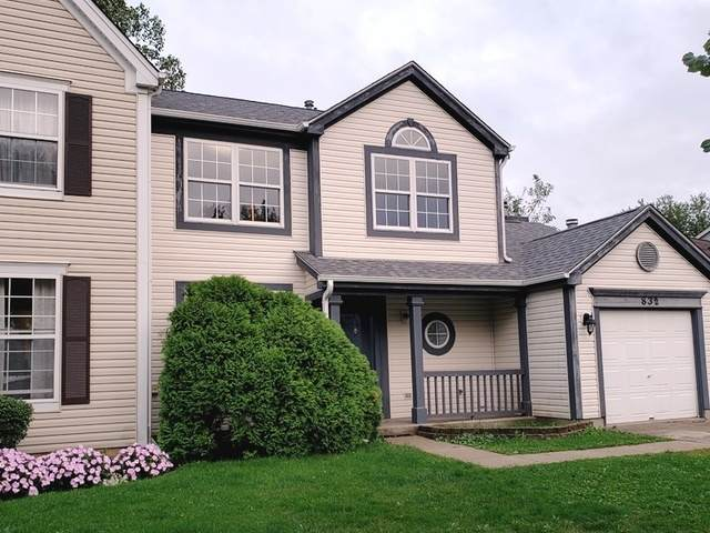 832 Cambridge Drive, Grayslake, IL 60030 (MLS #10920072) :: Property Consultants Realty
