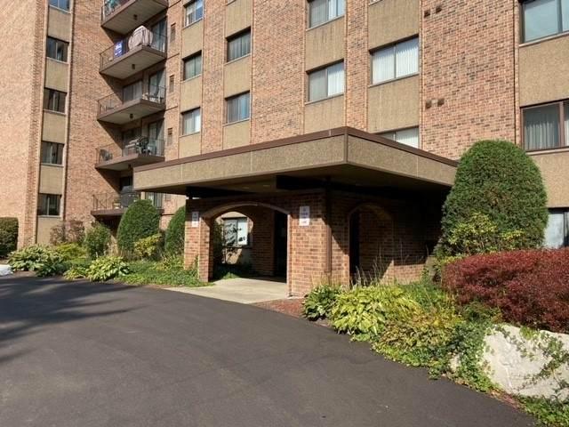 1702 Mill Street #301, Des Plaines, IL 60016 (MLS #10920243) :: Helen Oliveri Real Estate