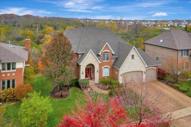 10632 Penfield Drive, Orland Park, IL 60462 (MLS #10920329) :: BN Homes Group