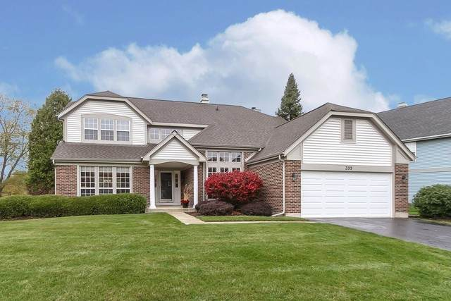 399 Wildberry Lane, Bartlett, IL 60103 (MLS #10920337) :: Century 21 Affiliated