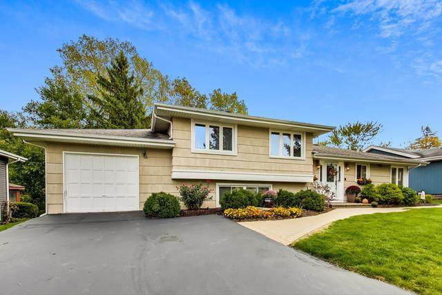 5837 Brookbank Road, Downers Grove, IL 60516 (MLS #10920344) :: Century 21 Affiliated