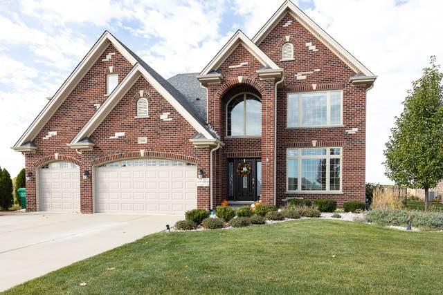15646 Jeanne Lane, Homer Glen, IL 60491 (MLS #10920616) :: Property Consultants Realty