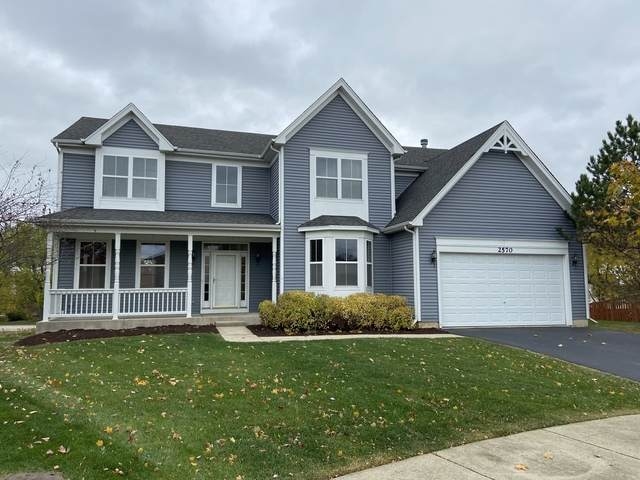 2570 Portage Avenue, Wauconda, IL 60084 (MLS #10920788) :: Lewke Partners