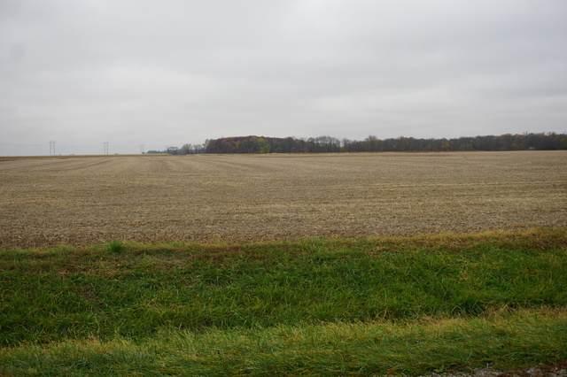 Section 6 T25n R14w, Onarga, IL 60955 (MLS #10920828) :: John Lyons Real Estate