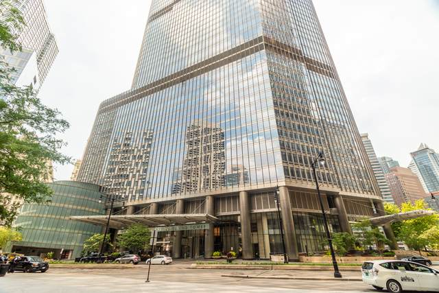 401 N Wabash Avenue 49D, Chicago, IL 60611 (MLS #10920949) :: BN Homes Group