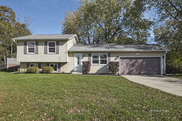 113 Quail Run, Lake In The Hills, IL 60156 (MLS #10921097) :: Jacqui Miller Homes