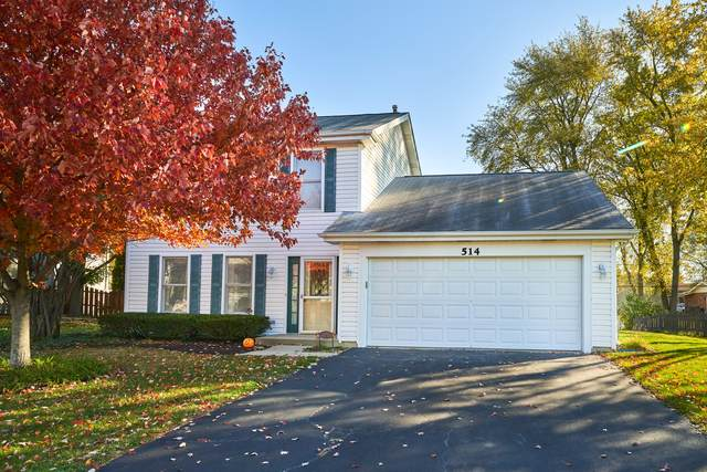 514 Old Country Way, Wauconda, IL 60084 (MLS #10921805) :: Helen Oliveri Real Estate