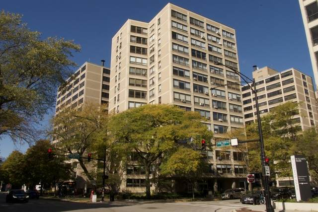 5050 S East End Avenue S 4A, Chicago, IL 60615 (MLS #10921829) :: Littlefield Group